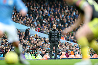 2nd November 2019; Etihad Stadium, Manchester, Lancashire, England; English Premier League Football, Manchester City versus Southampton; Manchester City manager Pep Guardiola follows play from the touchline  - Strictly Editorial Use Only. No use with unauthorized audio, video, data, fixture lists, club/league logos or 'live' services. Online in-match use limited to 120 images, no video emulation. No use in betting, games or single club/league/player publications