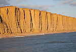Golden afternoon light on sandstone cliffs, East Cliffs, West Bay, Bridport, Dorset, England, UK