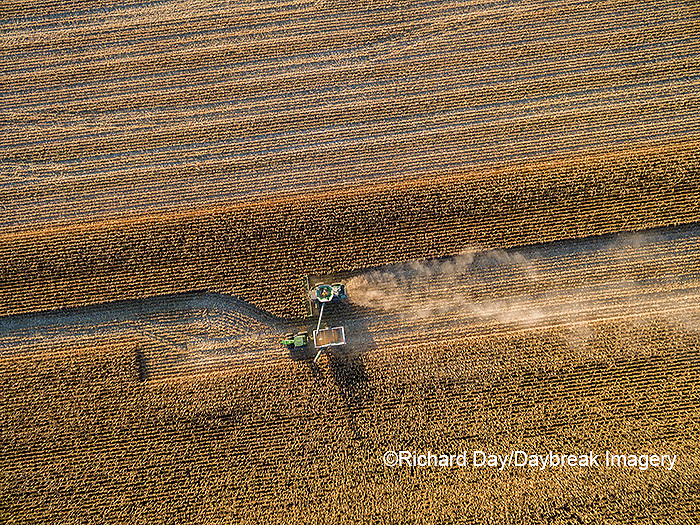 63801-08311 Corn Harvest, John Deere combine unloading corn into grain cart while harvesting - aerial Marion Co. IL