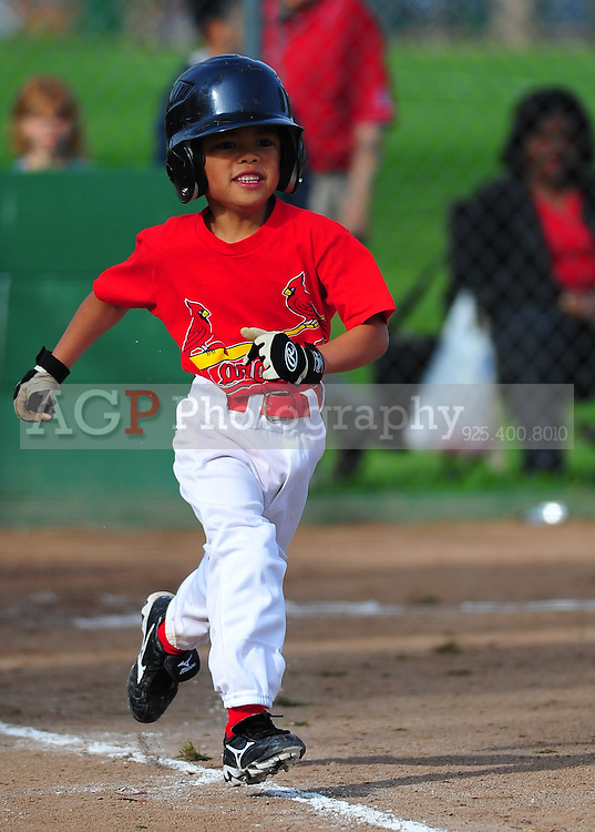 The Pleasanton National Little League Farm Cardinals play  at the Pleasanton Sports Park Saturday March 20, 2010. (Photo by Alan Greth)