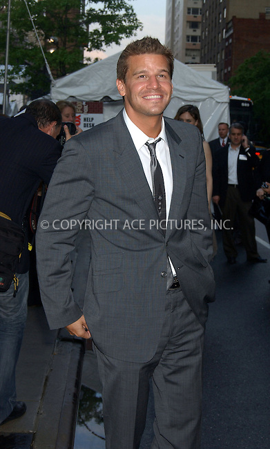 WWW.ACEPIXS.COM . . . . . ....NEW YORK, MAY 18, 2006....David Boreanaz at the FOX Broadcasting Company Upfront.....Please byline: KRISTIN CALLAHAN - ACEPIXS.COM.. . . . . . ..Ace Pictures, Inc:  ..(212) 243-8787 or (646) 679 0430..e-mail: picturedesk@acepixs.com..web: http://www.acepixs.com