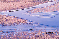 Ice detail in Rushing River <br />Rushing River Provincial Park<br />Ontario<br />Canada