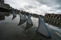 Greenpeace's 100 handmade shark fins installed in the Frank Kitts Park lagoon.The 100 floating fins last appeared in the lagoon in September when Greenpeace was urging the government take action on shark finning. Now Greenpeace is encouraging people to send a message to the government supporting the proposed ban and asking for it to be immediate. The deadline for public submissions is Sunday, December 8. Photo: Dave Lintott / lintottphoto.co.nz