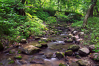 Rock Creek, Kilen Woods State Park, Minnesot