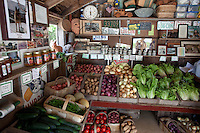 Log Cabin farm stand, Nauset, Cape Cod, MA
