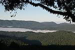 Santa Cruz Mountains from Panorama Ridge at Castle Rock State Park