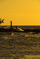 Net Fisherman, Kona, Hawaii