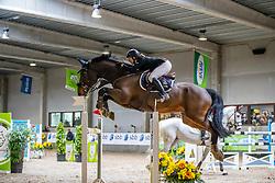 D'Hoore Femke, BEL, High Wind van Tschrijberg<br /> Klasse Zwaar<br /> Nationaal Indoor Kampioenschap Pony's LRV <br /> Oud Heverlee 2019<br /> © Hippo Foto - Dirk Caremans<br /> 09/03/2019