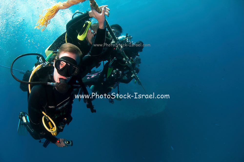 Scuba divers ascend slowly from a dive. Decompression stations are marked on the rope for a controlled ascend photographed at Ras Mohammed National Park, Red Sea, Sinai, Egypt,