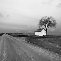 Remote rural scene with white painted barn with tree on roadside in Rolette County in USA
