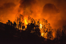 Christchurch-Fires burn through the night across the Port Hills