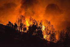 Christchurch-Fires burn through the night across the Port Hills