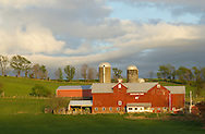 Chester, New York - The setting sun shines on the barns and silos at Brookview Farm  on April 20, 2012.