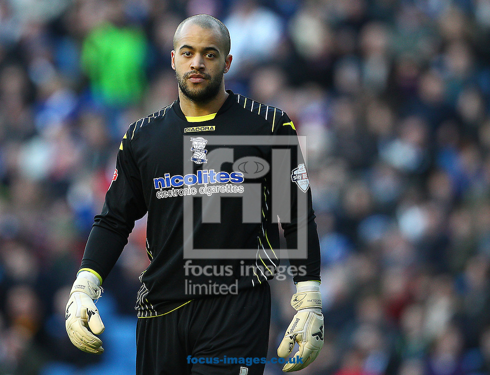 Picture by Paul Terry/Focus Images Ltd +44 7545 642257<br /> 11/01/2014<br /> Darren Randolph of Birmingham City during the Sky Bet Championship match at the American Express Community Stadium, Brighton and Hove.