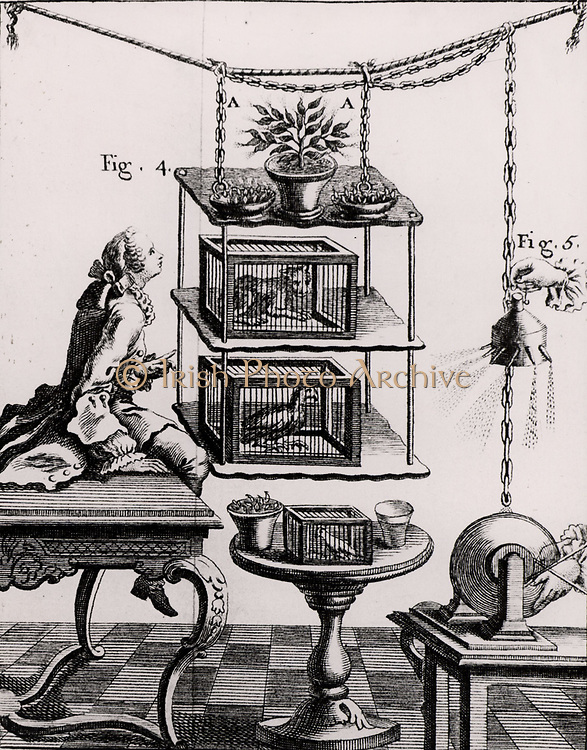 Experiment to ascertain the effects of electricity on plants and animals.  High voltage electricity generated by a glass globe static electric machine is carried by the chain to items suspended from silk cords in the centre of the picture. From 'Recherches sur les Causes Particulaires des Phenomenes Electriques' by Abbe Nollet (Paris, 1753). Engraving. .
