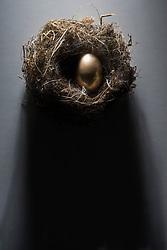 Golden egg in nest (Credit Image: © Image Source/Richard Ejsmentewic/Image Source/ZUMAPRESS.com)