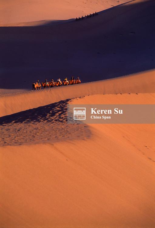 China, Gansu Province, Dunhuang, camel caravan on the desert