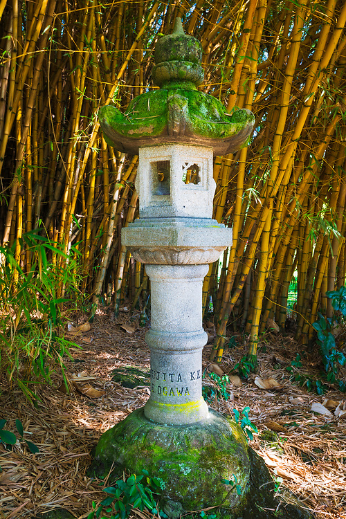 Japanese lantern and bamboo at Lili'uokalani Park and garden, Hilo, The Big Island, Hawaii USA