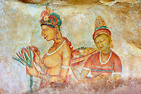 Sri Lanka, province du centre-nord, district de Polonnaruwa, Sigiriya, Ville ancienne et forteresse de Sigiriya classée patrimoine mondial de l'UNESCO, galerie des fresques des demoiselles de Sigiriya, apsara ou concubines du roi Kassyapa // Sri Lanka, Ceylon, North Central Province, Sigiriya Lion Rock fortress, UNESCO world heritage site, cave frescoes of the 5th century representing Apsara and concubines of the King Kassyapa