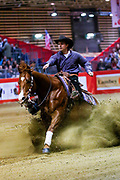 Klaus Lechner on Tinseltownsmokingun during the Equestrian NRHA European Derby Open Finals Equita Lyon 2017 on November 4, 2017 at Eurexpo Lyon in Chassieu, near Lyon, France - Photo Romain Biard / Isports / ProSportsImages / DPPI