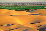 MEXICO, BAJA CALIFORNIA NORTH Algondones Sand Dunes east of Mexicali straddling the US/Mexico border west of Yuma, Arizona