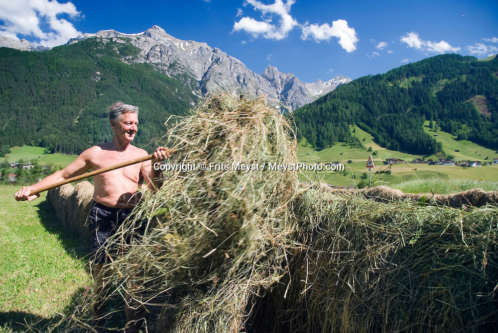 Neustift, Stubaital, Tyrol, Austria, June 2009. A farmer brings in the hay. Whether you want to experience the big hiking adventure climbing the summit on your own, with friends or companions trekking from one Alpine hut to another, or as a family walk - you will find everything the hiker- and holiday maker desires in the Stubaivalley. Photo by Frits Meyst/Adventure4ever.com
