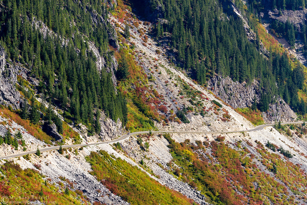 Fall foliage along the Stevens Canyon Road and one of the slide zones in Mount Rainier National Park, Washington State, USA