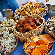 baskets of wild harvested forest mushrooms at the farmers' market in Portland, Oregon