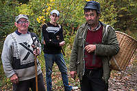 Three Romanian men returning from picking  edible tree mushrooms - mostly from Common beech (Fagus sylvatica) - in the forest close to Baile Herculane, Caras Severin, Carpathians, Romania.