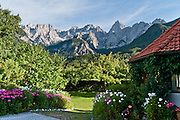 """Pink and white flowers bloom in a driveway beneath the Julian Alps, Slovenia, Europe. The Martuljek mountain group rises high above the town of Gozd Martuljek (""""Martuljek Forest,"""" formerly known as Rute) in the Julian Alps, Kranjska Gora, Upper Carniola, Slovenia. Left to right are the following peaks: Siroka pec (2497 meters/8192 feet); Oltar (2621 m); and the pyramid of Spik (""""Spike,"""" 2472 m/8110 feet); all within Triglav National Park (in Slovene: Triglavski narodni park, TNP). Historically, four linguistic and cultural groups of Europe have met in Slovenia: Slavic, Germanic, Romance, and Uralic. In 1991, Slovenia declared full sovereignty from Yugoslavia. In the 2002 census, 83% considered themselves Slovenes. Today, Slovenia is a member of the European Union, the Eurozone, the Schengen area, NATO and OECD. Per capita, Slovenia is the richest Slavic nation-state."""