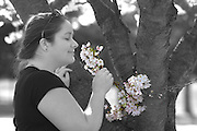 Dogwood tree flowering woman
