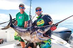 OIFC Swordfish