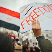 Egypt Mubarak Protest - D.C. 2011