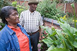 Older couple admiring plants in their garden,
