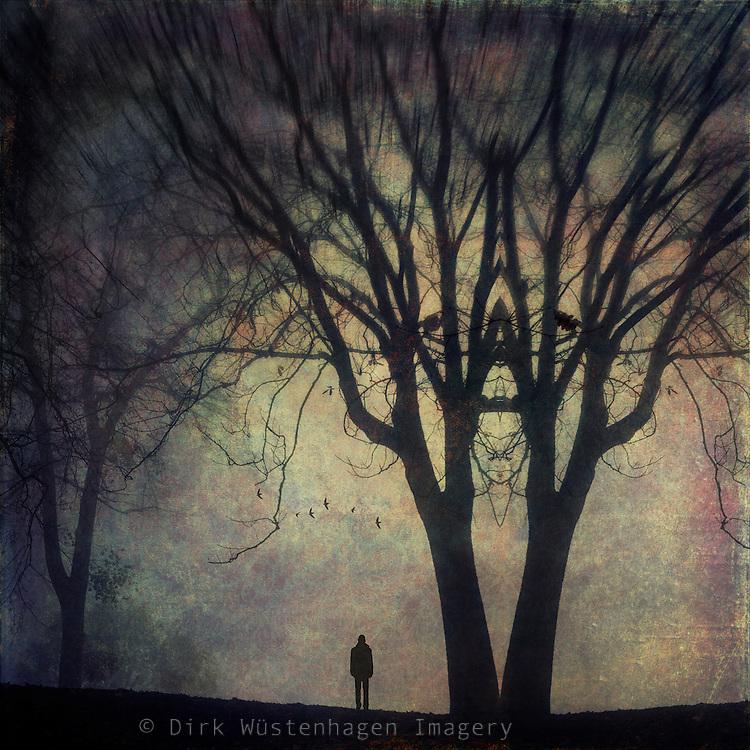surreal landscape with symmetrical tree & figure walking