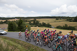 The main peloton rides on the second KOM the 97,1 km second stage of the 2016 Ladies' Tour of Norway women's road cycling race on August 13, 2016 between Mysen and Sarpsborg, Norway. (Photo by Balint Hamvas/Velofocus)