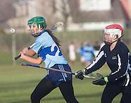 British and Scottish Universities Shinty - Hurling matches 28.01.2012