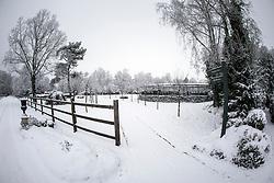 Arjen Teeuwissen Stables Vlimmeren  2012<br /> © Dirk Caremans