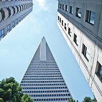 Transamerica Pyramid in downtown San Francisco