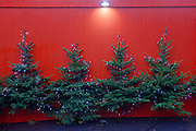 Christmas trees attached to a red hoarding near an Xmas theme village on London's Southbank, England.