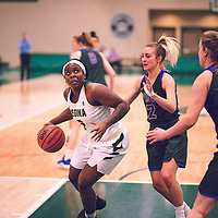 3rd year guard, Kyanna Giles (9) of the Regina Cougars during the Women's Basketball Home Game on Thu Feb 14 at Centre for Kinesiology,Health and Sport. Credit: Arthur Ward/Arthur Images