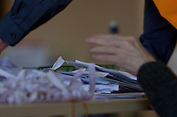 Potocall as postal votes processed. Edinburgh council workers begin to verify the first votes submitted by post at Royal Highland Centre, Ingliston<br /> Pako Mera/Universal News And Sport (Europe) 12/09/2014