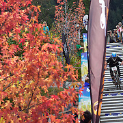 Rupert Chapman from Christchurch heads down the Brecon Street steps in Queenstown during the Corona Dirtmasters Downhill event in Queenstown, Central Otago. Eighty competitors tackled the technically demanding course which started at the Gondola summit and finished with a run down the steps in Brecon Street, Queenstown. The event was part of the inaugural Queenstown Bike Festival, which took place from 16th-25th April. The event hopes to highlight Queenstown's growing profile as one of the three leading biking centres in the world. Queenstown, Central Otago, New Zealand. 24th April 2011. Photo Tim Clayton..