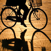 Bicycle shadow, Hiroshima, Japan (June 2004)