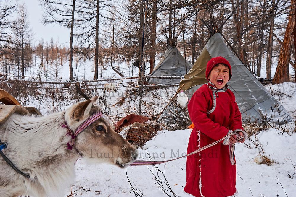 Mongolie, province de Khovsgol, les Tsaatans, éleveurs des rennes, campement en hiver des Tsaatan, jeune garçon appelant ses rennes // Mongolia, Khovsgol province, the Tsaatan, reindeer herder, the winter camp, young boy crying to call his reindeers
