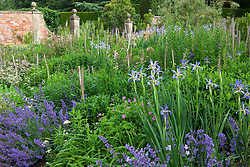 Borders in The Old Garden at Hidcote Manor with nepeta and iris