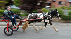 © Licensed to London News Pictures. <br /> 05/06/2014. <br /> <br /> Appleby, Cumbria, England<br /> <br /> Horses and traps are driven up the 'mad mile' as gypsies and travellers gather during the annual horse fair on 5 June, 2014 in Appleby, Cumbria. The event remains one of the largest and oldest events in Europe and gives the opportunity for travelling communities to meet friends, celebrate their music, folklore and to buy and sell horses.<br /> <br /> The event has existed under the protection of a charter granted by King James II in 1685 and it remains the most important event in the gypsy and traveller calendar.<br /> <br /> Photo credit : Ian Forsyth/LNP