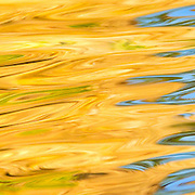 Detail of water at sunset with green, orange, blue reflections;  Minnesota.