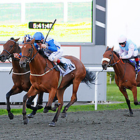 Kempton 18th September