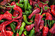 Red and green chile peppers from New Mexico.